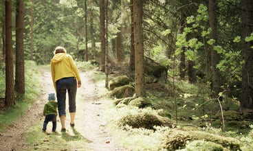 BABYBJÖRN Magazine – A walk in the forest is great for outdoor activities with kids.