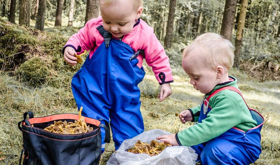 Revista BABYBJÖRN – Los consejos de la familia sobre qué pueden hacer los niños durante la excursión por el bosque de 0 a 6 años.