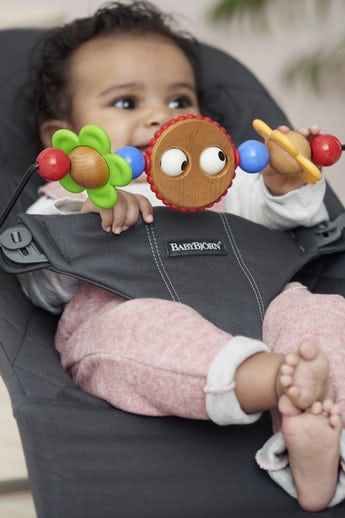 Bouncer Bliss Anthracite-grey in Cotton with Toy Googly Eyes - BABYBJÖRN